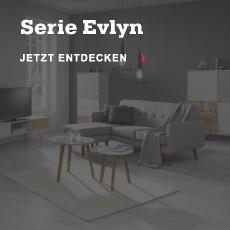 serie-evlyn
