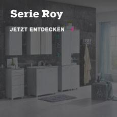 serie-roy