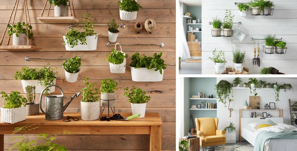 teaser-urban-gardening-trend-moemax-tema