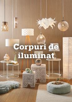 categorie_principale_corpuri_de_iluminati