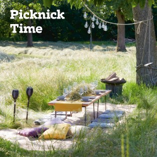 teaser_0619_picknick