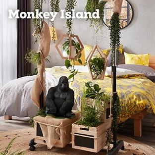 fp_teaser_monkey