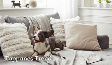 tappancs-trend-inspiracio