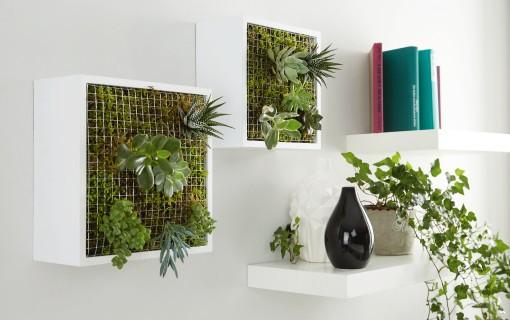 hb_0317_indoorgardening
