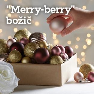 313x313_VSI11-9-b_bozic_Merry