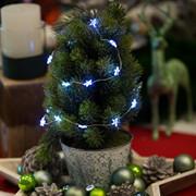 neukat_weihnachten_beleuchtung