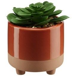 Kunstpflanze Sukkulente inkl. Topf - Pink/Orange, Kunststoff (10,5/13cm) - Mömax modern living