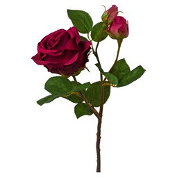 Rose Mauvei Lila/Grün - Lila/Braun, Kunststoff (48cm)