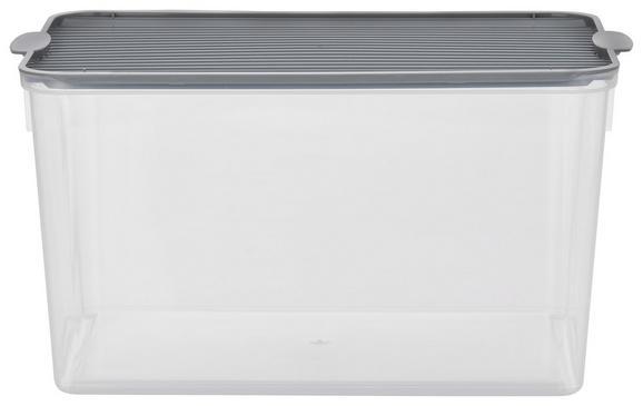 Box mit Deckel Lorry Grau - Transparent, KONVENTIONELL, Kunststoff (5l) - PLAST 1