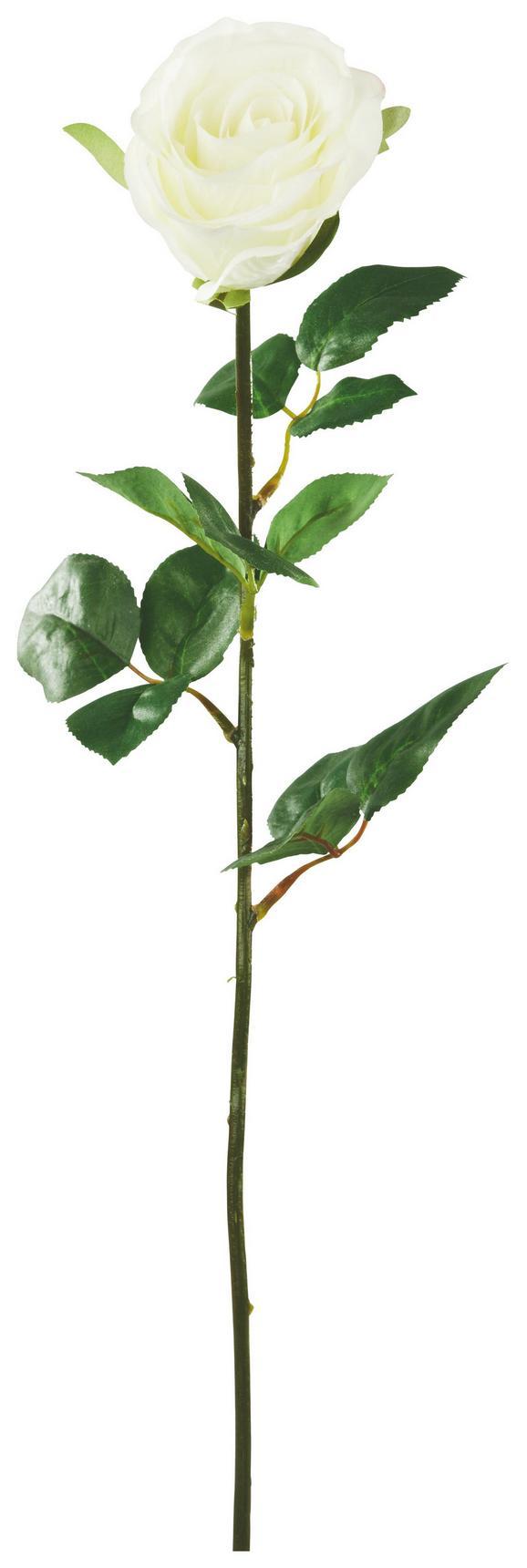 Művirág Rose - Zöld/Krém, Műanyag/Fém (69cm) - Mömax modern living