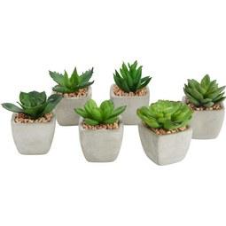 Kunstpflanze Mimi verschiedene Modelle - Grün, LIFESTYLE, Kunststoff (9/7cm)