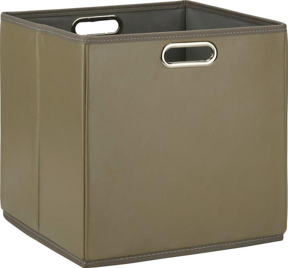 Aufbewahrungsbox Ivy Braun - Braun, Kunststoff/Metall (33/32/33cm) - Mömax modern living