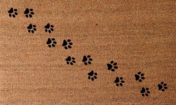 Fußmatte Track 40x60cm - Braun, MODERN, Textil (40/60cm) - MÖMAX modern living