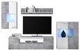 Regal Za Dnevni Boravak Vulcan - bijela/siva, MODERN, drvni materijal/plastika (265-295/194/40cm)