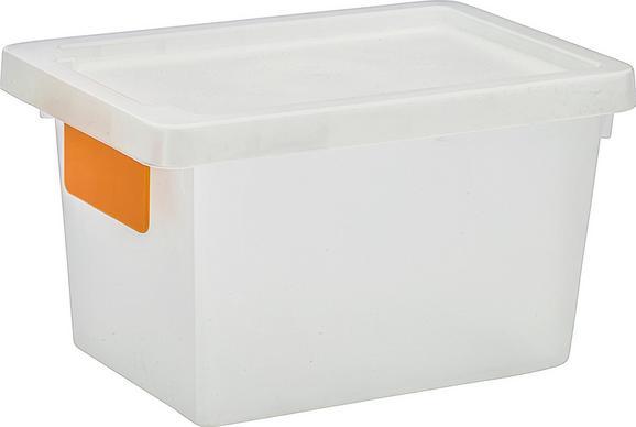 Box mit Deckel Mathias, ca. 23x15x14cm - Transparent, KONVENTIONELL, Kunststoff (23,3/15,3/13,8cm) - Mömax modern living