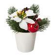 Plantă De Decor Poinsettien-Apfel - alb/verde, Konventionell, ceramică/plastic (14,5cm)