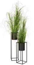 Cvetlični Lonček Kiara - črna, Trendi, kovina (21/80,5cm) - Mömax modern living