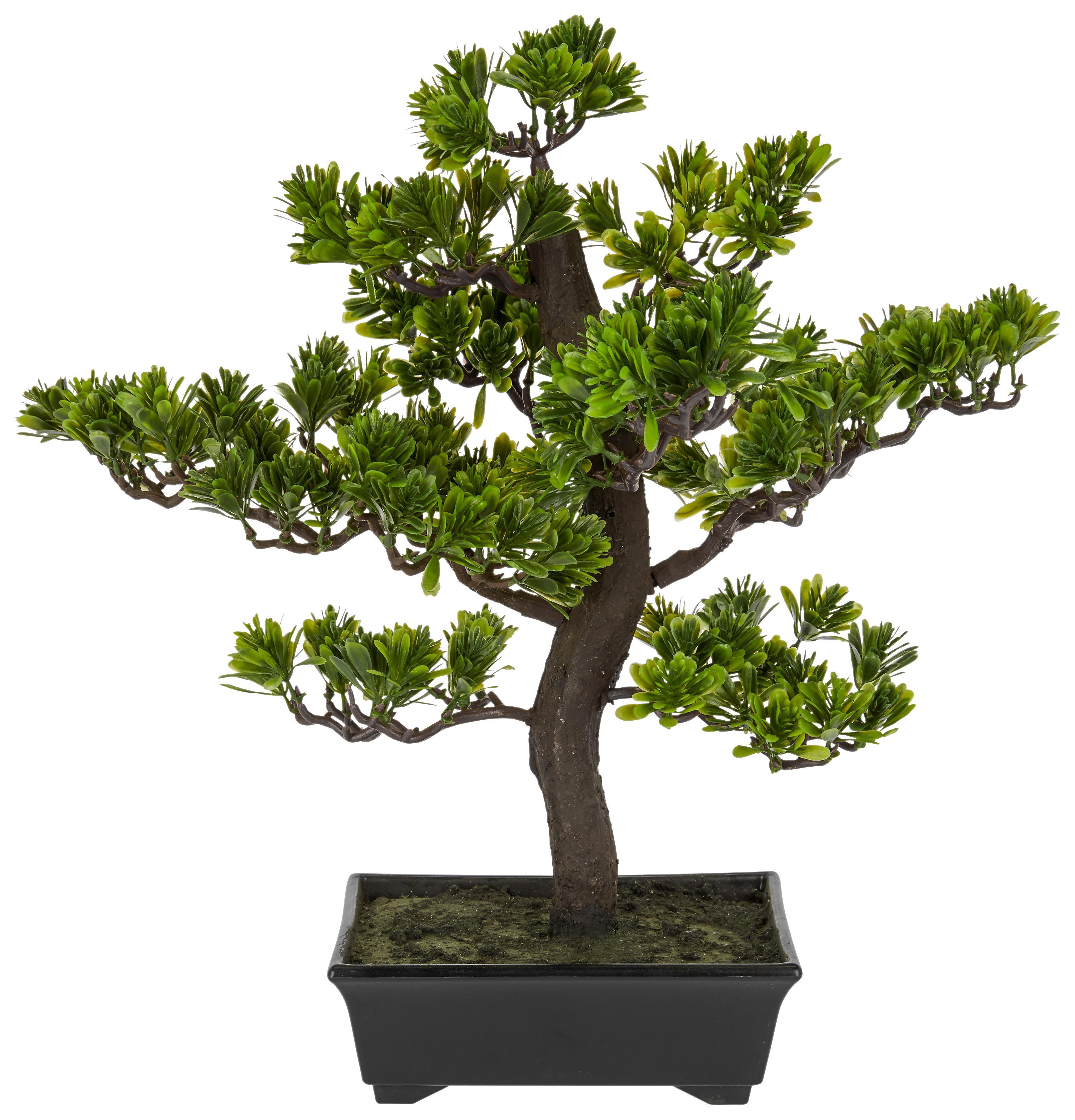 kunstpflanze bonsai gr n online kaufen m max. Black Bedroom Furniture Sets. Home Design Ideas