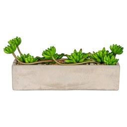 Kunstpflanze Linus Grün - Grün, Kunststoff (12 cmcm)