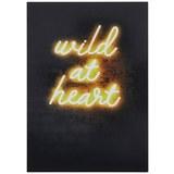 Postkarte Wild at Heart - Multicolor, Papier (10,5/14,8cm)