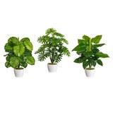 Kunstpflanze Monsterbusch versch. Modelle - Grün, Kunststoff (50cm)