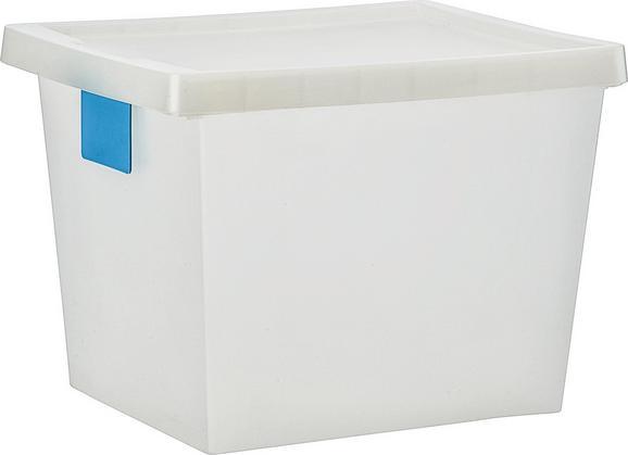 Aufbewahrungsbox Mathias, ca. 41x33x30cm - Transparent, KONVENTIONELL, Kunststoff (41/33/30cm) - Mömax modern living