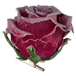 Rose Rose I Bordeaux - Bordeaux, Kunststoff (10,5/8,5cm)