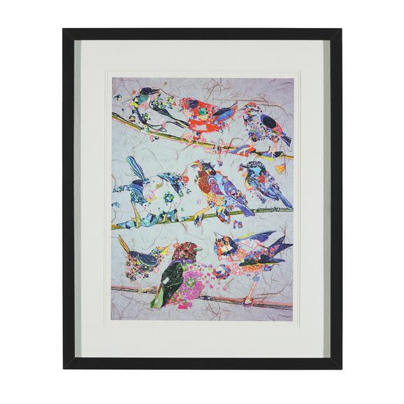 BILD BIRDY III ca.46X56X3CM - Multicolor/Schwarz, MODERN, Glas/Holz (46/56/3cm) - Bessagi Home