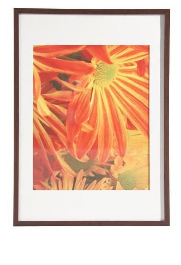Képkeret Fa - wenge színű, modern, üveg/fa (50/70cm) - MÖMAX modern living