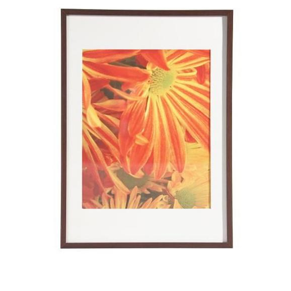 Okvir Za Slike Gitta - wenge, Moderno, steklo/leseni material (50/70/3,6cm) - Mömax modern living