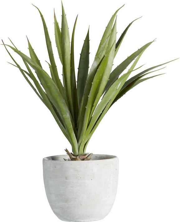 Műnövény Agave - Zöld, konvencionális, Műanyag (38 cmcm) - Mömax modern living