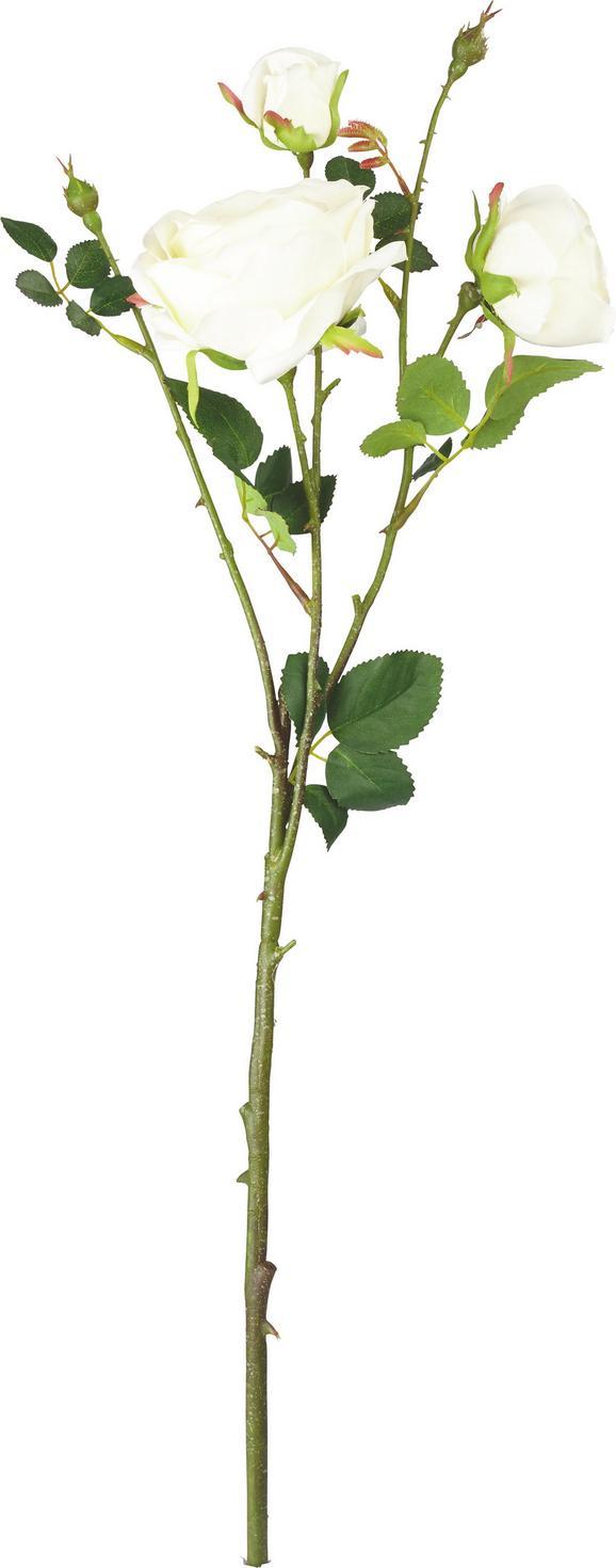 Kunstblume Rosa in Creme/grün - Creme/Grün, Kunststoff/Textil (63cm) - Mömax modern living