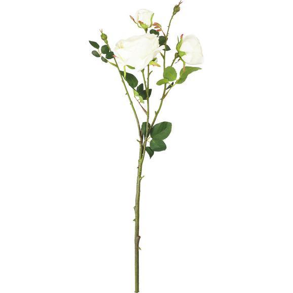 Umetna Roža Rosa - zelena/krem, kovina/umetna masa (63cm) - Mömax modern living