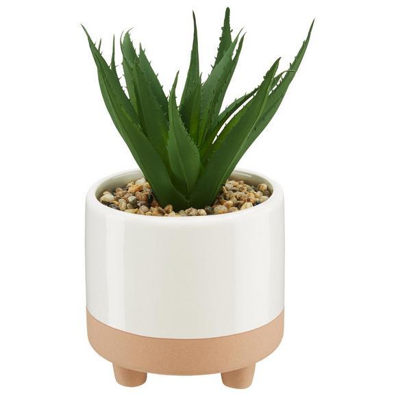 Kunstpflanze Sukkulente inkl. Topf - Pink/Weiß, Kunststoff (10,5/20cm) - Mömax modern living