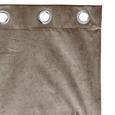 Ösenschal Diana in Taupe ca. 140x245cm - Taupe, LIFESTYLE, Textil (140/245cm) - Premium Living