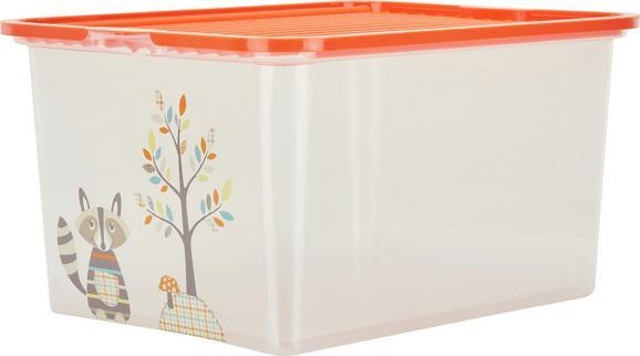 Box mit Deckel Andi aus Kunststoff - Türkis/Transparent, Kunststoff (48/36/25,5cm)