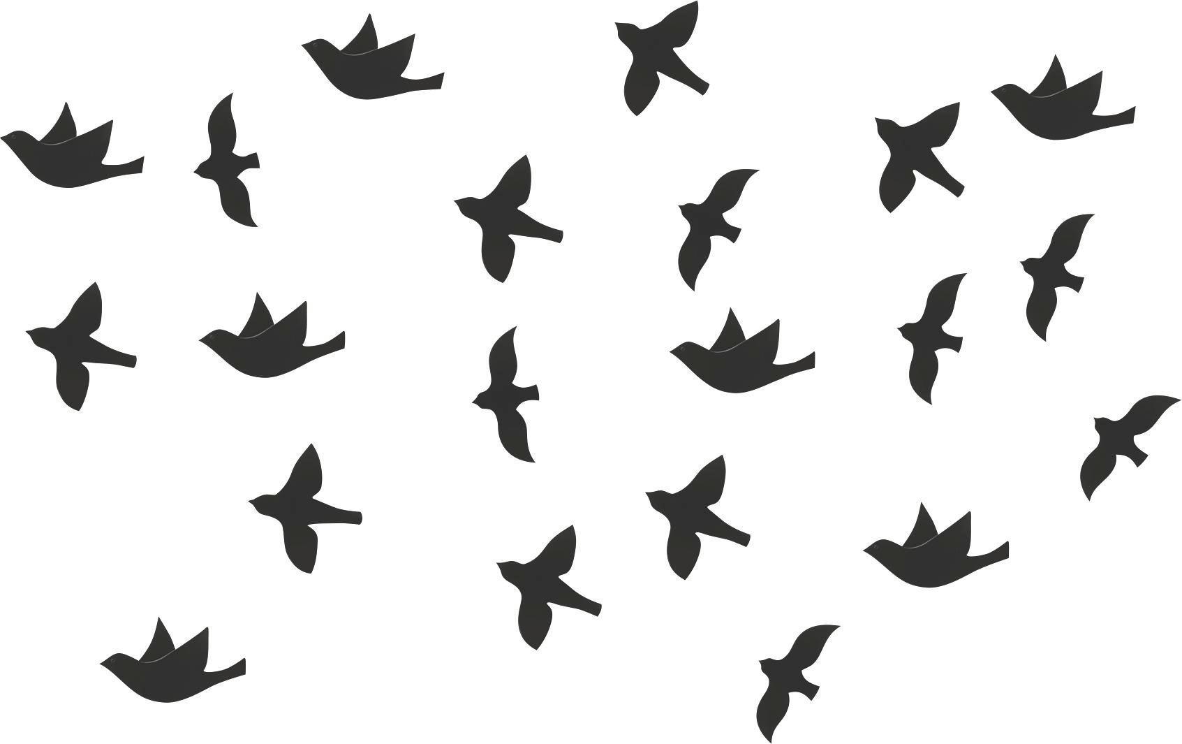 Wanddeko Birds in Schwarz - Schwarz, MODERN, Kunststoff - MÖMAX modern living