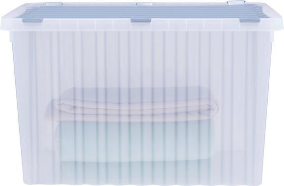 Škatla S Pokrovom Vito - roza/modra, umetna masa (60/40/36cm)