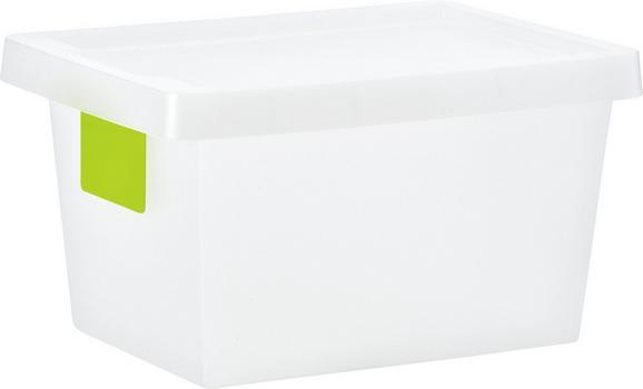 Doboz Tetővel Írható Kártyával - Áttetsző, konvencionális, Műanyag (36.4/25.6/20.5cm) - Mömax modern living