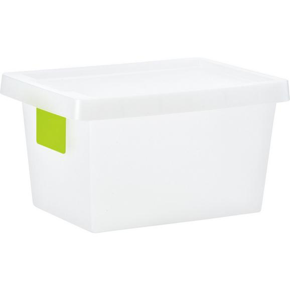 Škatla S Pokrovom Mathias - prosojna, Konvencionalno, umetna masa (36.4/25.6/20.5cm) - Mömax modern living