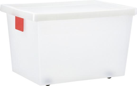 Doboz Tetővel Írható Kártyával - Áttetsző, konvencionális, Műanyag (54/38/33cm) - Mömax modern living