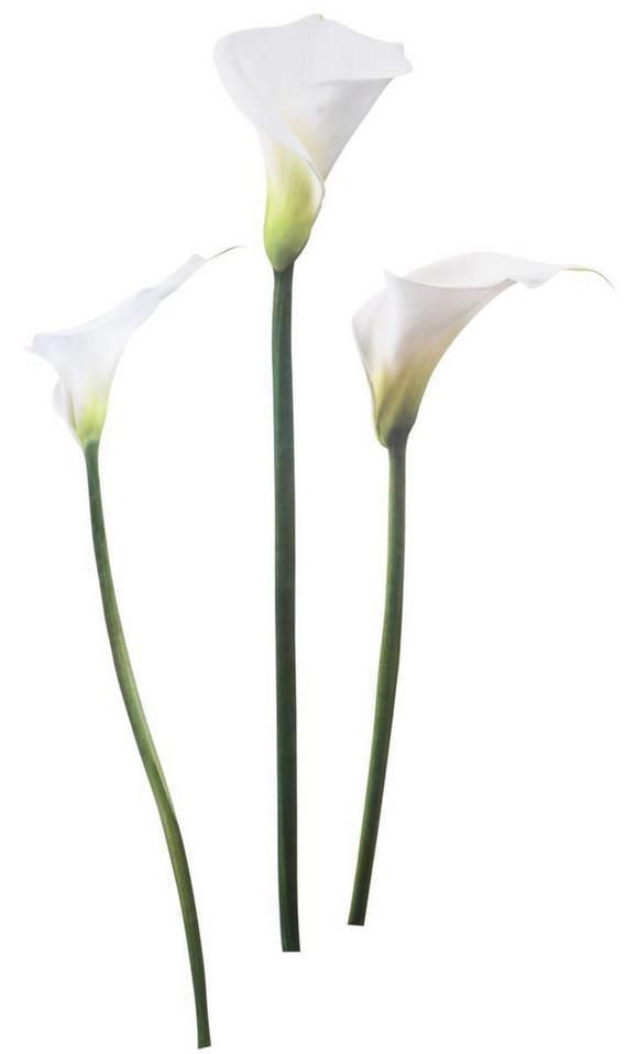 Dekosticker Calla in Weiß - Weiß, Kunststoff (50/70cm) - Mömax modern living