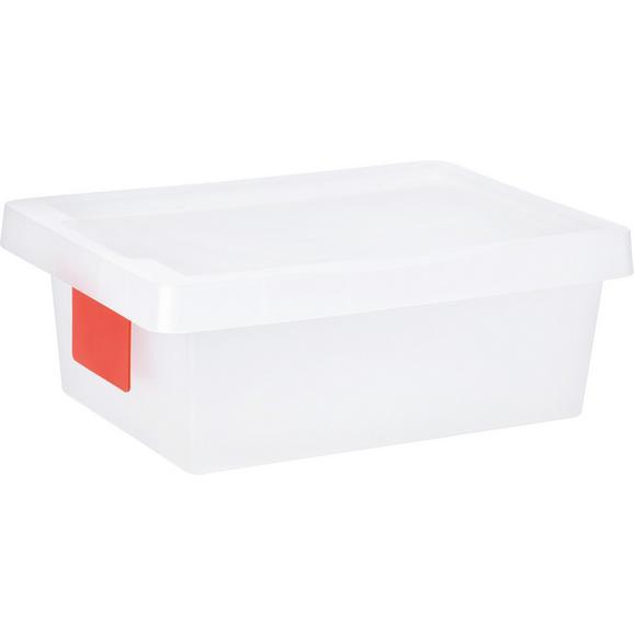 Box mit Deckel Mathias, ca. 36x25x13cm - Transparent, KONVENTIONELL, Kunststoff (36/25/13cm) - Mömax modern living