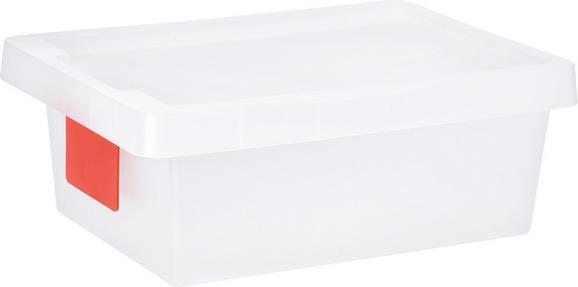 Doboz Tetővel Írható Kártyával - Áttetsző, konvencionális, Műanyag (36/25/13cm) - Mömax modern living
