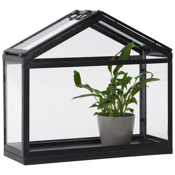 Gewächshaus Sade in Schwarz aus Glas - Klar/Schwarz, LIFESTYLE, Glas/Metall (50,5/46/20cm) - Modern Living