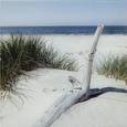 Glasbild Lonely Bay, ca. 30x30x2cm - Multicolor, MODERN, Glas (30/30/2cm) - Mömax modern living