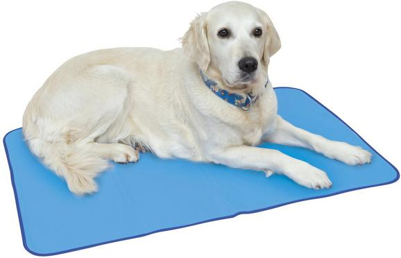 Hundekühlmatte Bello in Blau, ca. 90x60cm - Blau, Kunststoff (90/60cm) - Mömax modern living