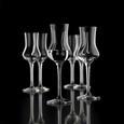 Schnapsglas Treviso ca. 80ml - Klar, Glas (0,08l)
