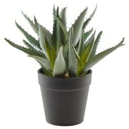 Kunstpflanze Aloe Grün - Grün, Basics, Kunststoff (34cm)