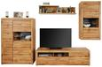Tv-element Tizio - hrast/srebrna, Moderno, kovina/umetna masa (171,3/48,4/49,5cm) - Zandiara